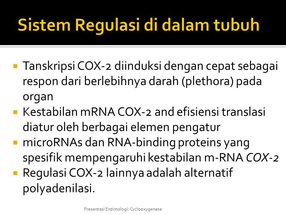 Sistem Regulasi di dalam tubuh
