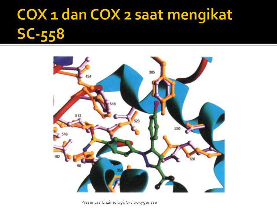 COX 1 dan COX 2 saat mengikat SC-558