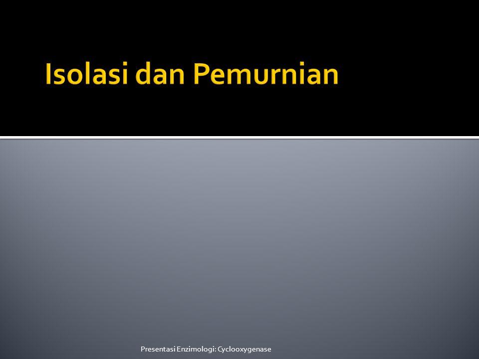 Isolasi dan Pemurnian Presentasi Enzimologi: Cyclooxygenase