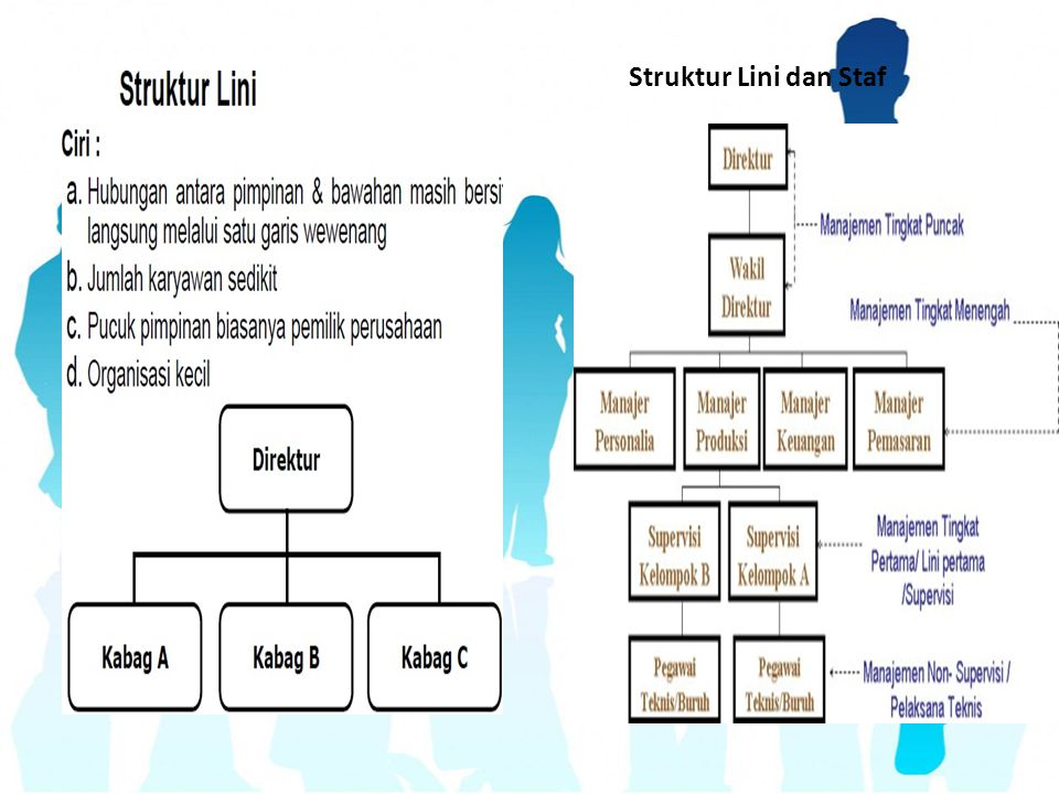 Struktur Lini dan Staf
