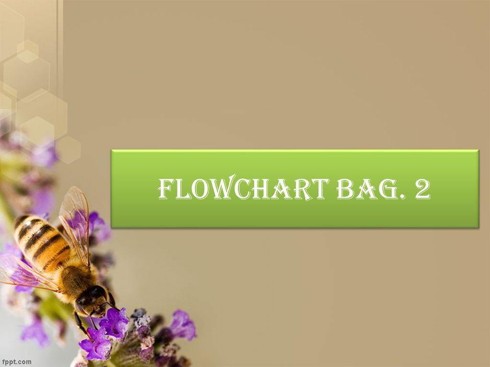 Flowchart Bag.
