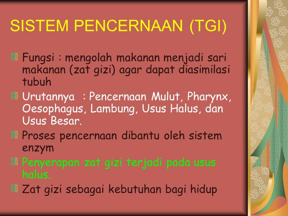 SISTEM PENCERNAAN (TGI)