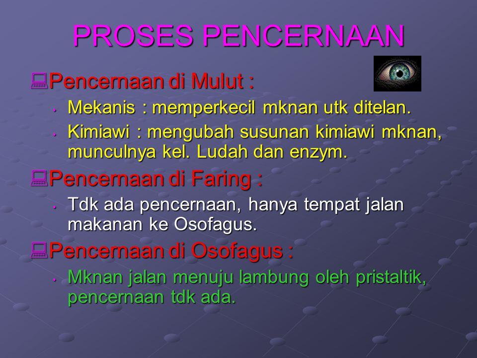 PROSES PENCERNAAN Pencernaan di Mulut : Pencernaan di Faring :