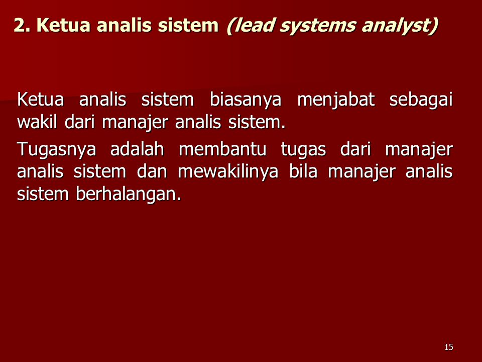 2. Ketua analis sistem (lead systems analyst)