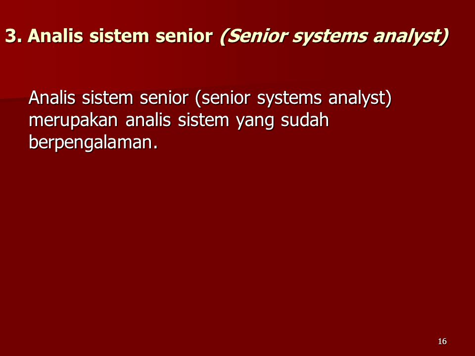 3. Analis sistem senior (Senior systems analyst)