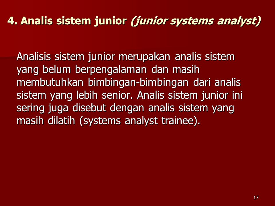 4. Analis sistem junior (junior systems analyst)