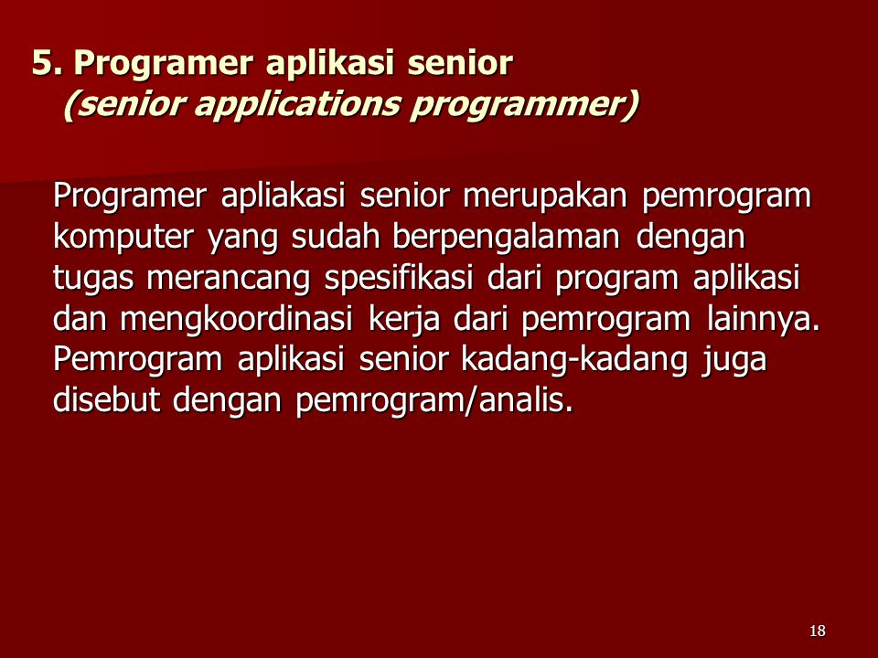5. Programer aplikasi senior (senior applications programmer)