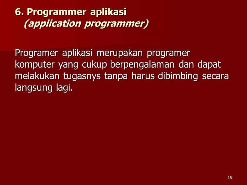 6. Programmer aplikasi (application programmer)