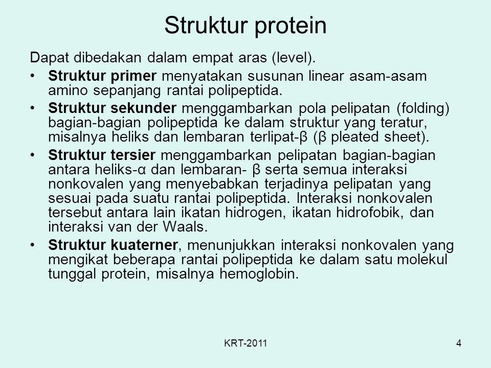 Struktur protein Dapat dibedakan dalam empat aras (level).