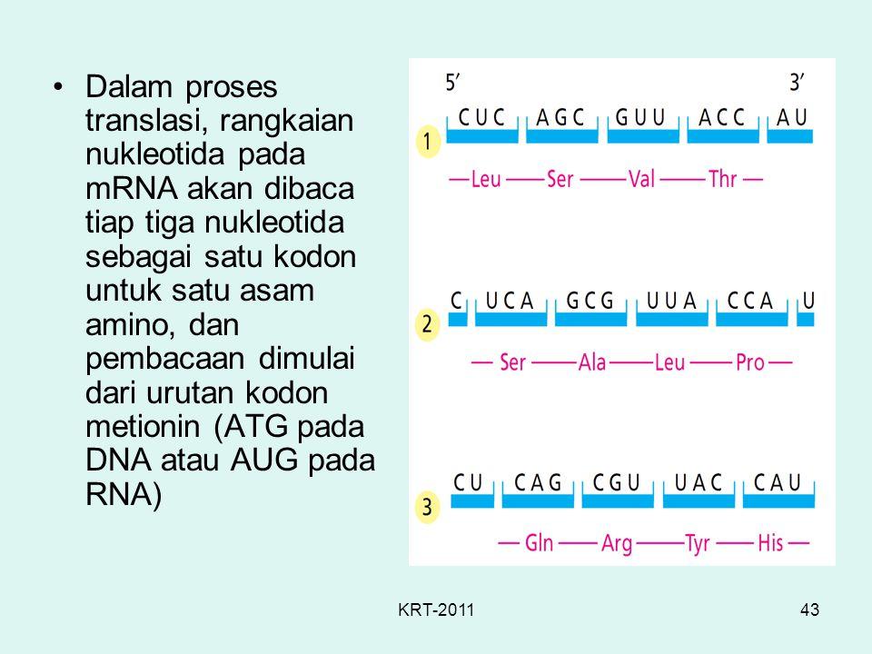 Dalam proses translasi, rangkaian nukleotida pada mRNA akan dibaca tiap tiga nukleotida sebagai satu kodon untuk satu asam amino, dan pembacaan dimulai dari urutan kodon metionin (ATG pada DNA atau AUG pada RNA)