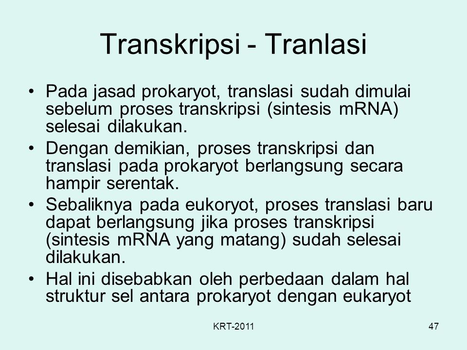 Transkripsi - Tranlasi