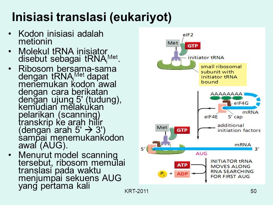 Inisiasi translasi (eukariyot)