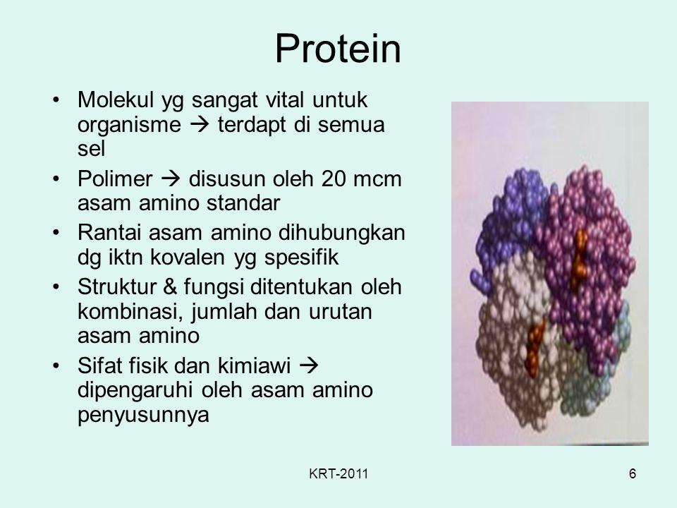 Protein Molekul yg sangat vital untuk organisme  terdapt di semua sel