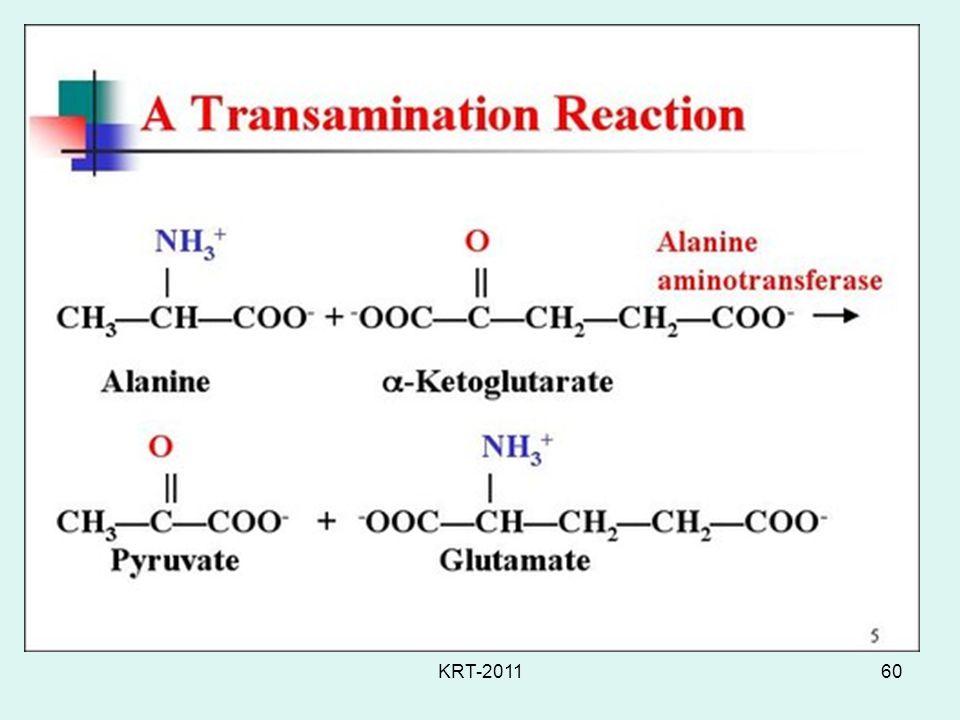 Transamination KRT-2011