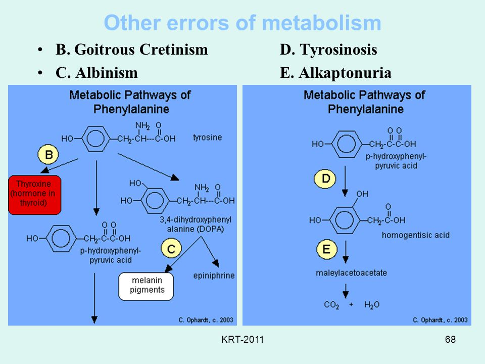 Other errors of metabolism