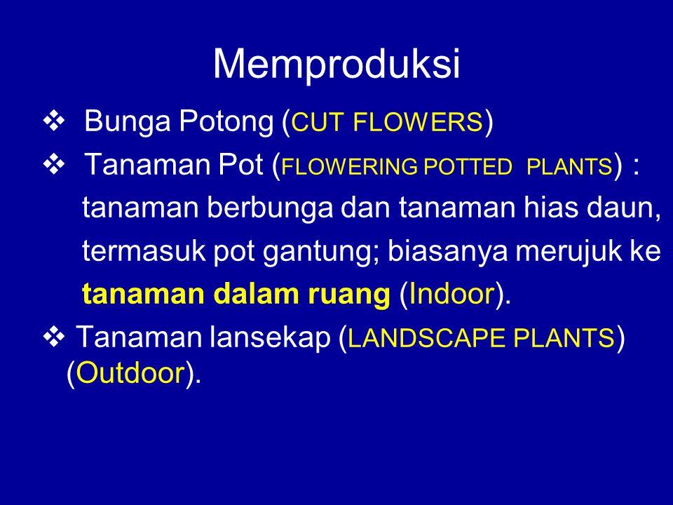 Memproduksi Bunga Potong (CUT FLOWERS)
