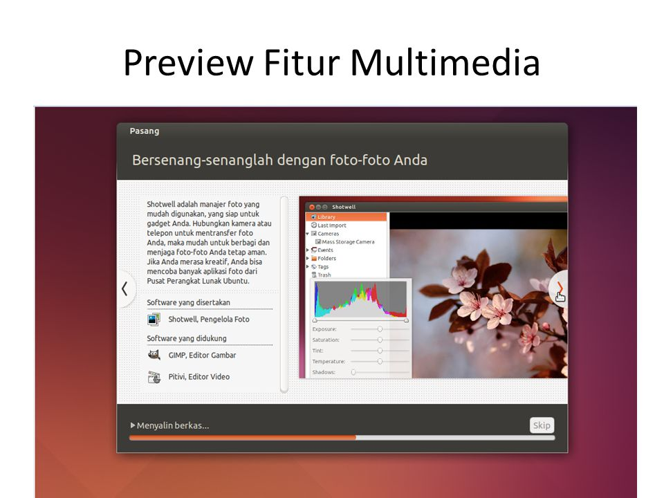 Preview Fitur Multimedia