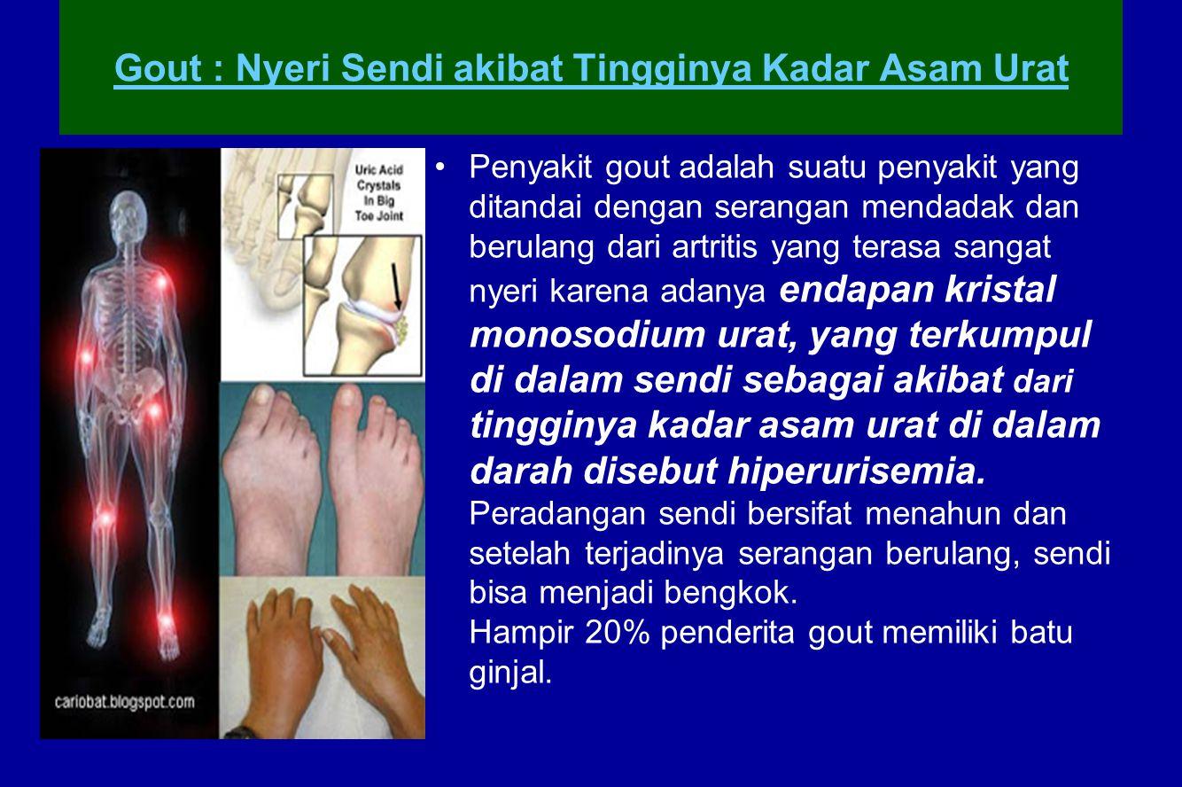 Gout : Nyeri Sendi akibat Tingginya Kadar Asam Urat