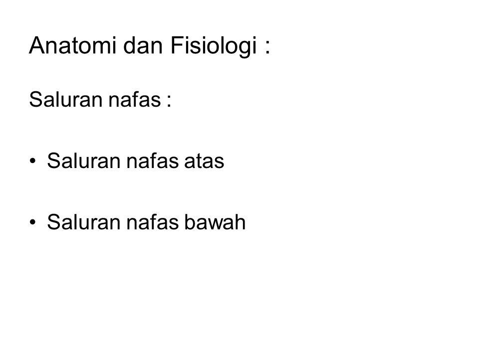Anatomi dan Fisiologi :
