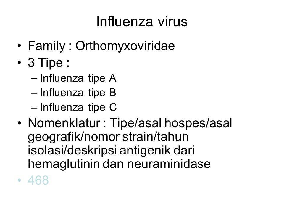 Influenza virus Family : Orthomyxoviridae 3 Tipe :