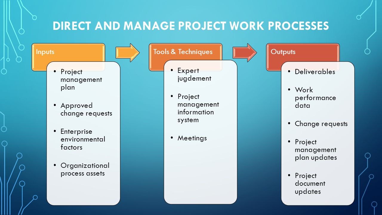 Direct and Manage Project Work PROCESSES