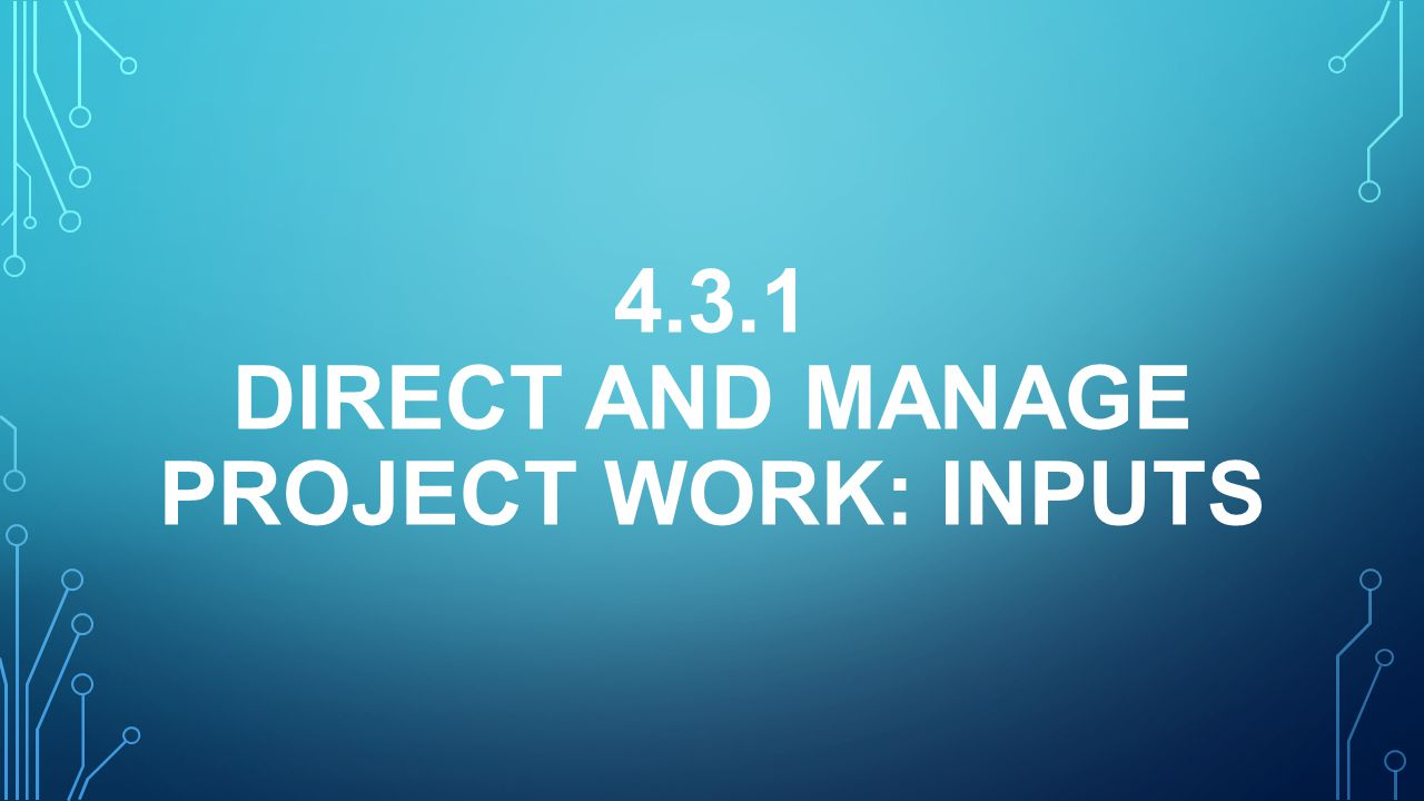 4.3.1 Direct and Manage Project Work: inputS
