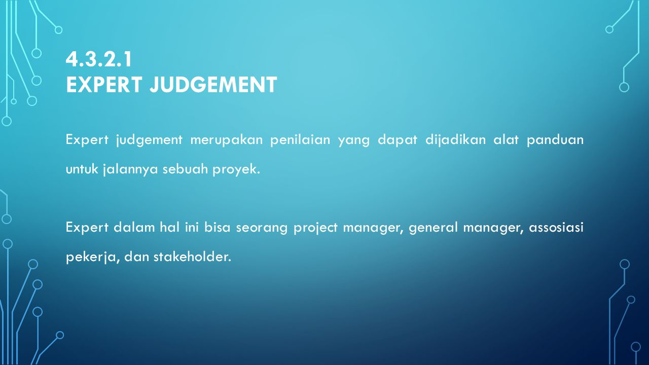 4.3.2.1 Expert judgement