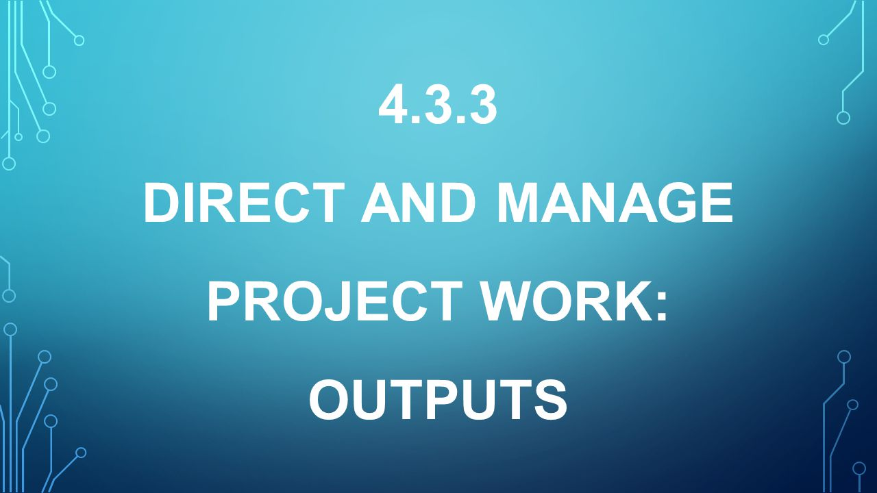 4.3.3 DIRECT AND MANAGE PROJECT WORK: OUTPUTS