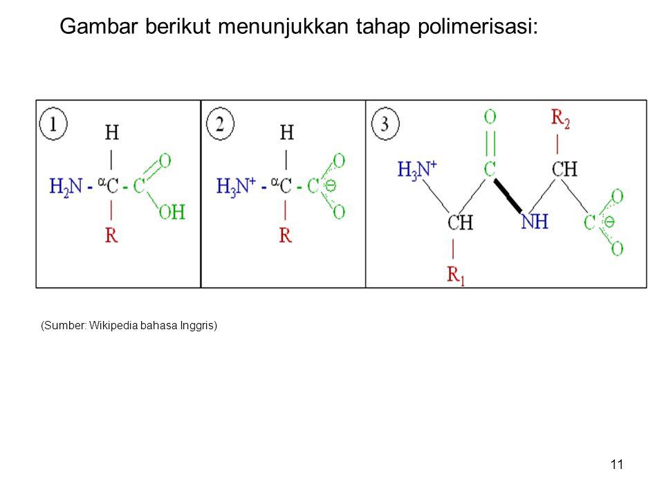 Gambar berikut menunjukkan tahap polimerisasi:
