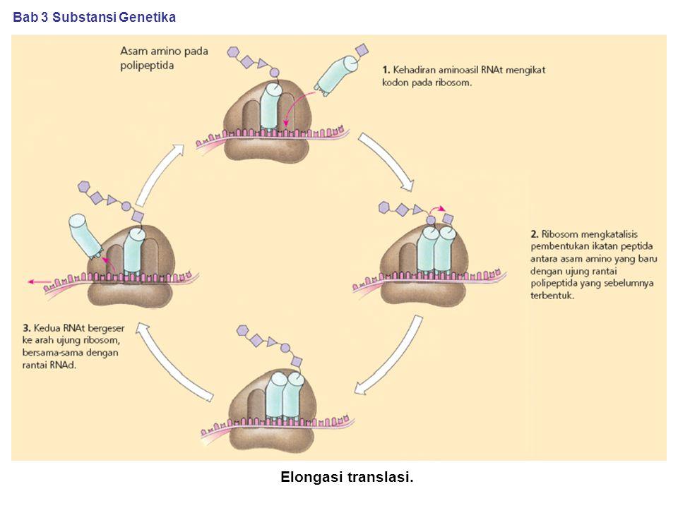 Bab 3 Substansi Genetika
