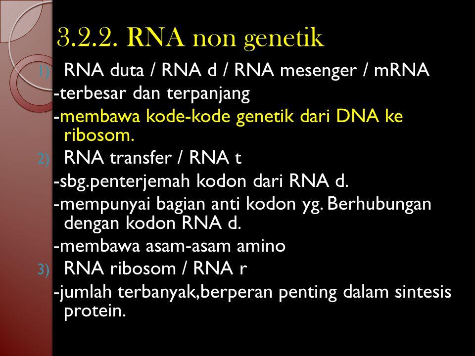 3.2.2. RNA non genetik RNA duta / RNA d / RNA mesenger / mRNA
