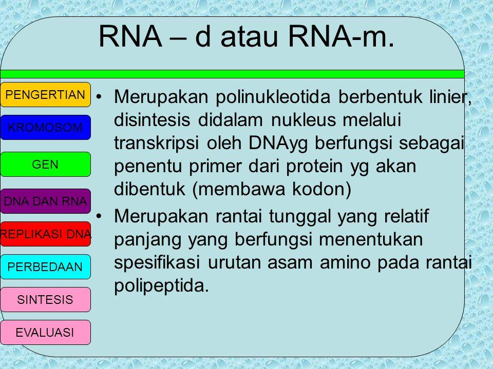 RNA – d atau RNA-m.