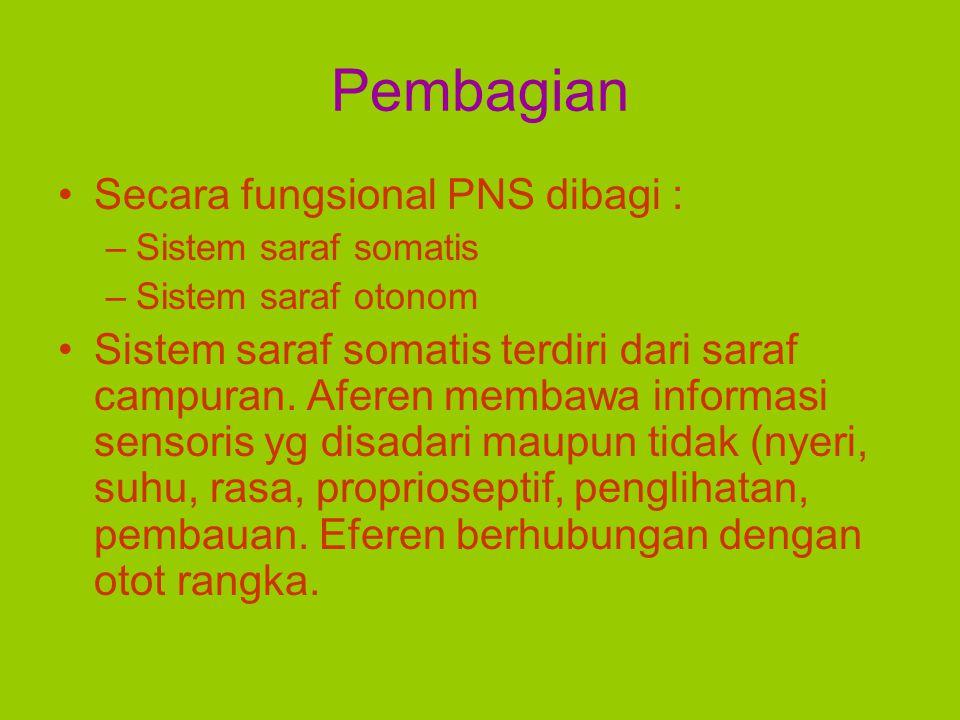 Pembagian Secara fungsional PNS dibagi :