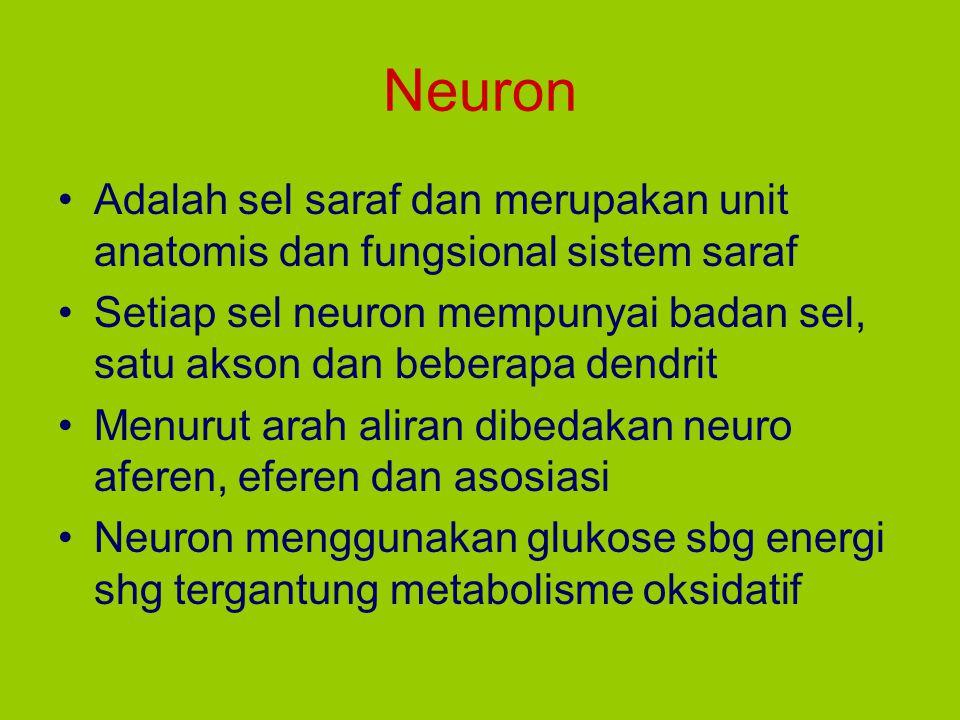 Neuron Adalah sel saraf dan merupakan unit anatomis dan fungsional sistem saraf.
