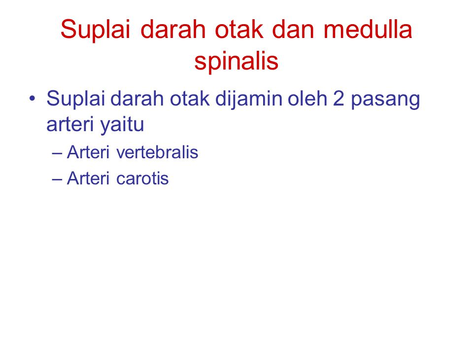 Suplai darah otak dan medulla spinalis