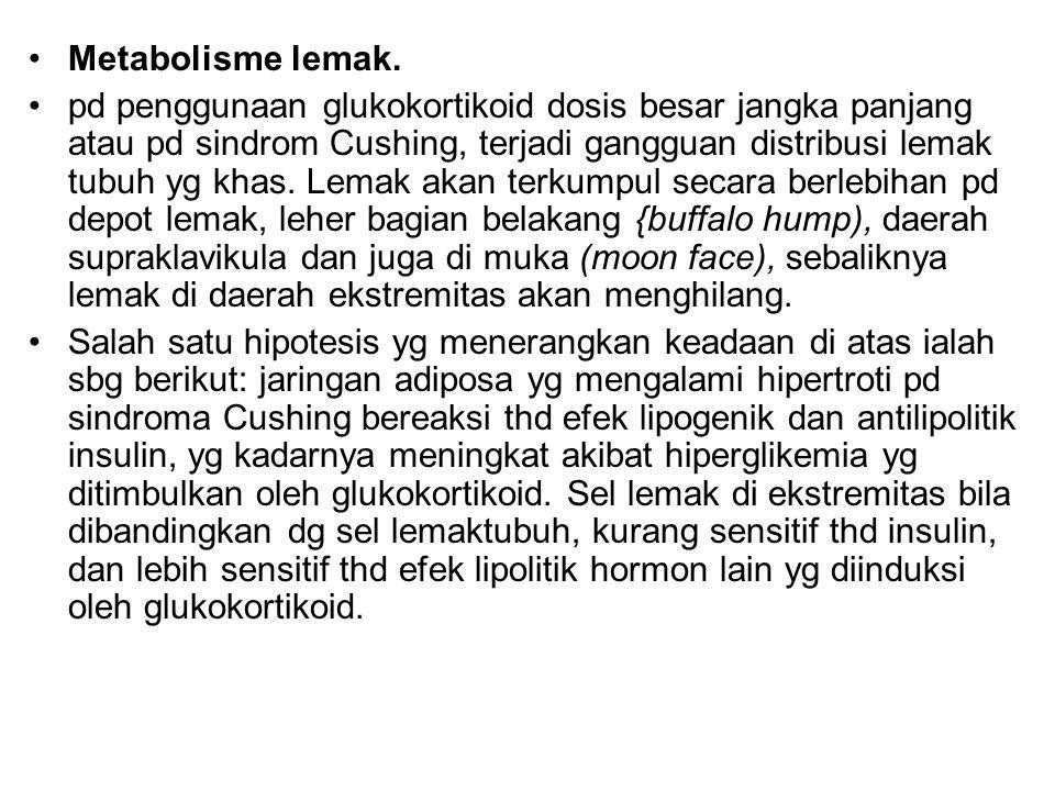 Metabolisme lemak.
