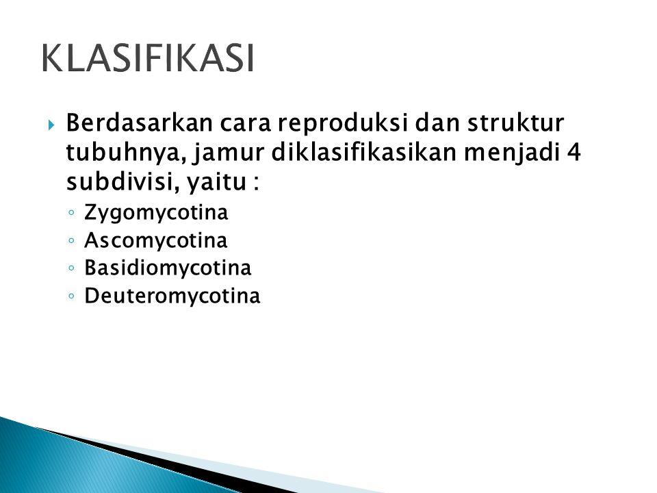 KLASIFIKASI Berdasarkan cara reproduksi dan struktur tubuhnya, jamur diklasifikasikan menjadi 4 subdivisi, yaitu :