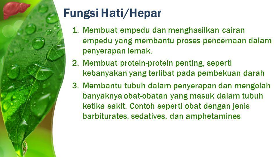 Fungsi Hati/Hepar Membuat empedu dan menghasilkan cairan empedu yang membantu proses pencernaan dalam penyerapan lemak.