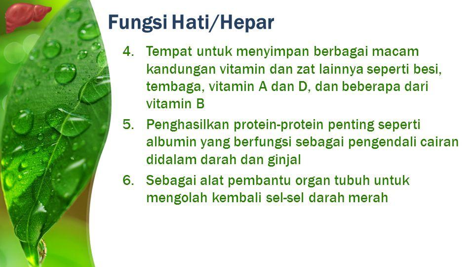 Fungsi Hati/Hepar