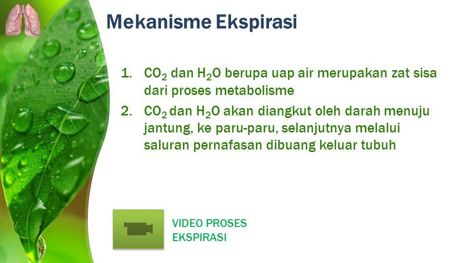 Mekanisme Ekspirasi CO2 dan H2O berupa uap air merupakan zat sisa dari proses metabolisme.