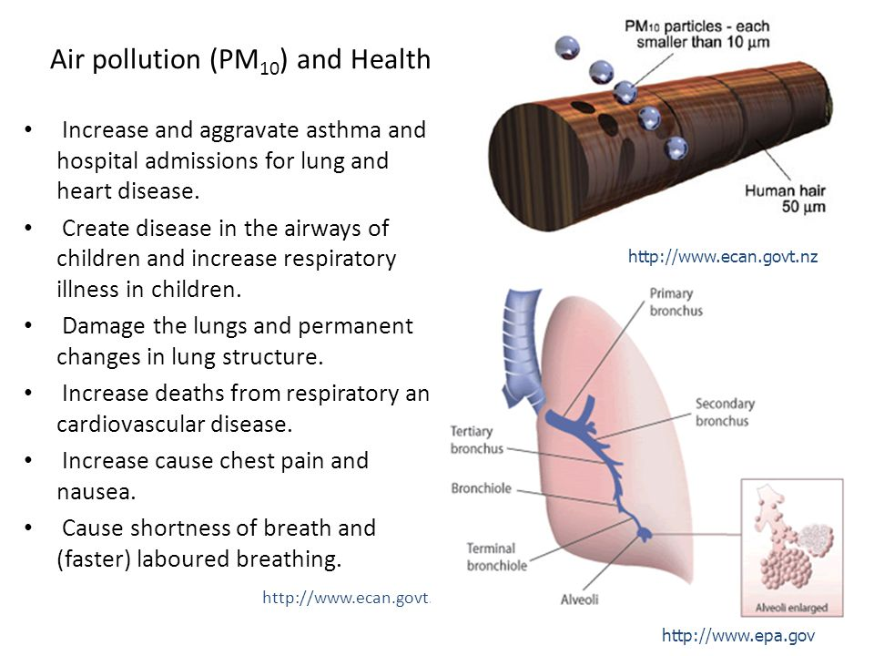 Air pollution (PM10) and Health
