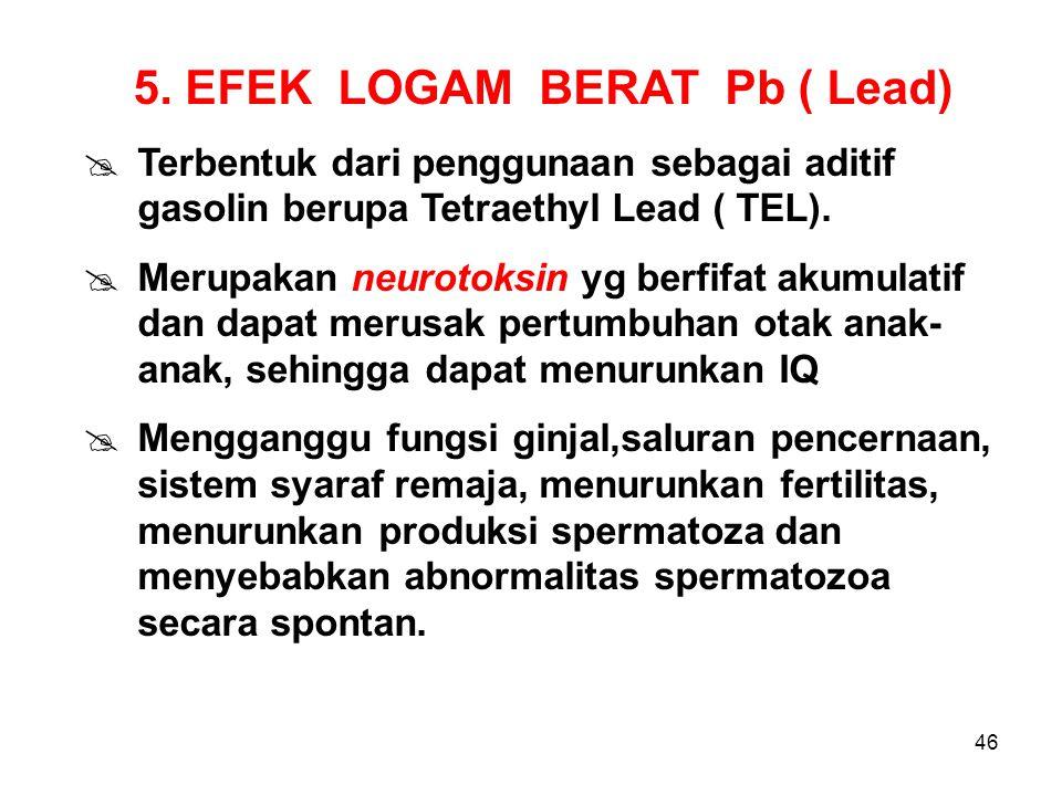 5. EFEK LOGAM BERAT Pb ( Lead)