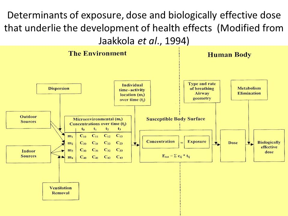 Determinants of exposure, dose and biologically effective dose that underlie the development of health effects (Modified from Jaakkola et al., 1994)