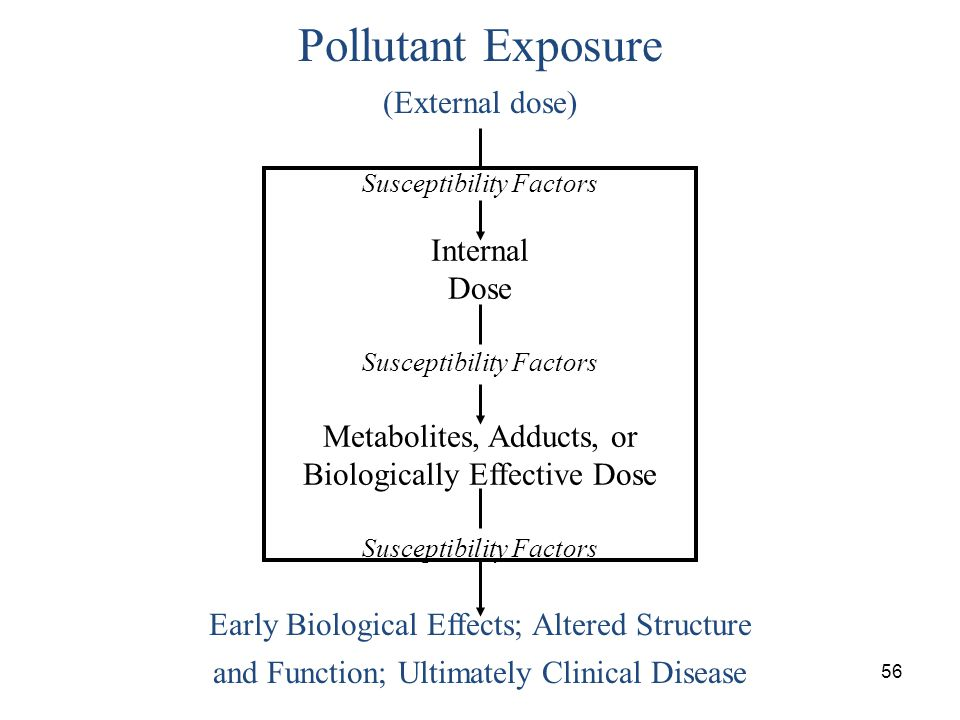 Pollutant Exposure (External dose) Internal Dose