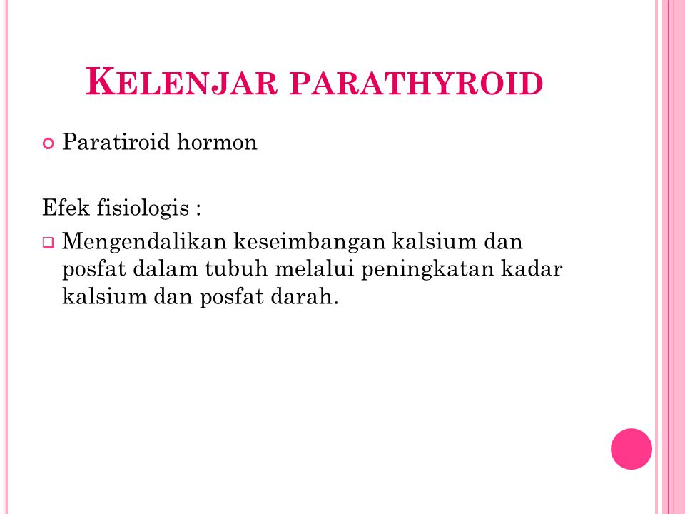 Kelenjar parathyroid Paratiroid hormon Efek fisiologis :