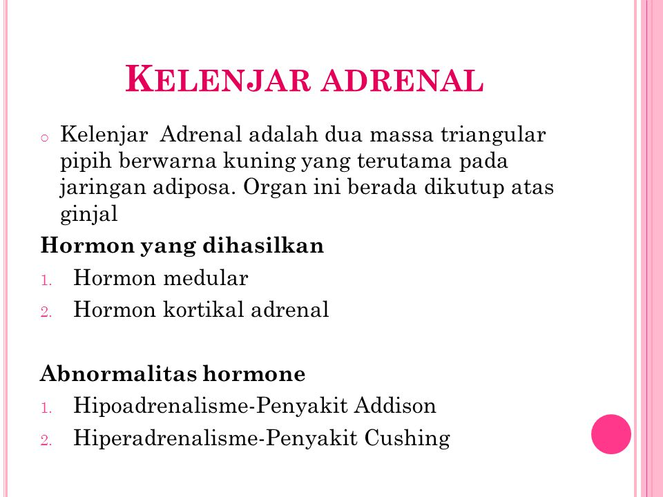 Kelenjar adrenal