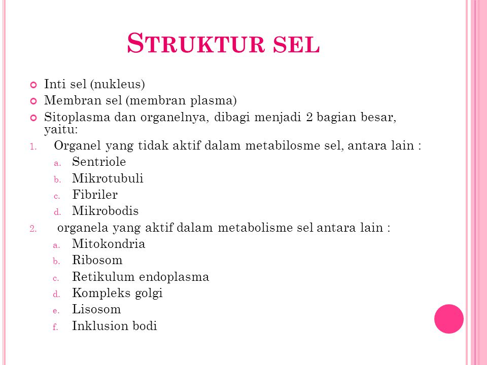 Struktur sel Inti sel (nukleus) Membran sel (membran plasma)