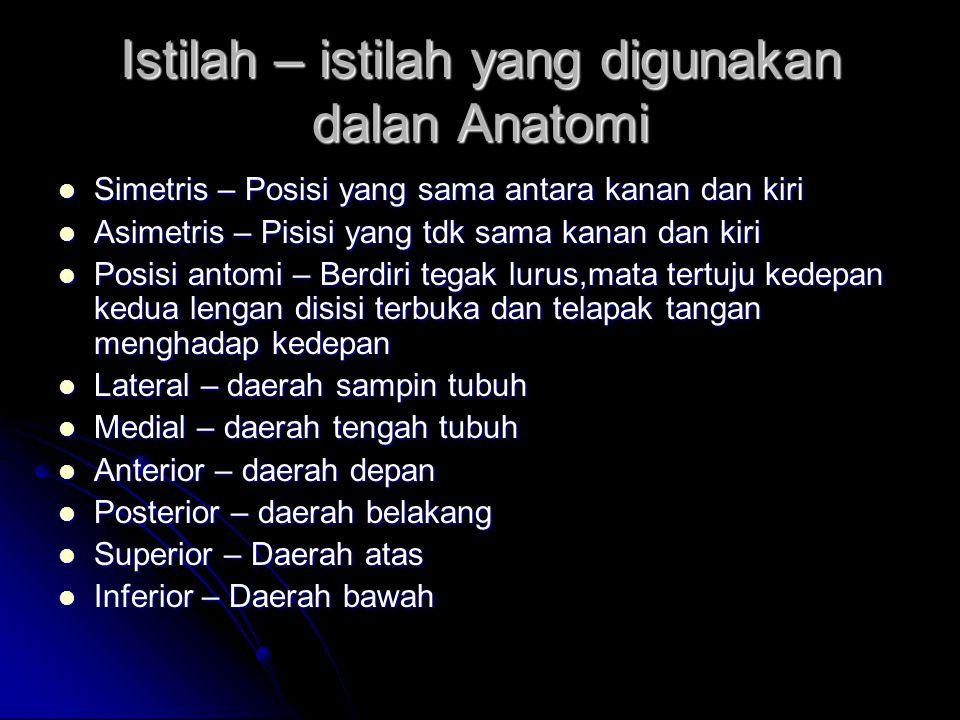 Istilah – istilah yang digunakan dalan Anatomi