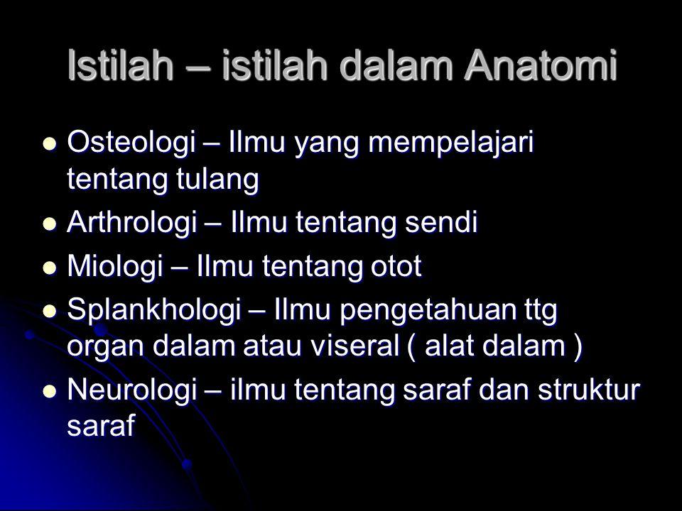 Istilah – istilah dalam Anatomi