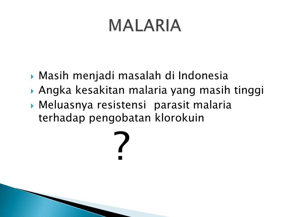 MALARIA Masih menjadi masalah di Indonesia